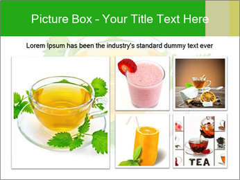 0000074380 PowerPoint Templates - Slide 19