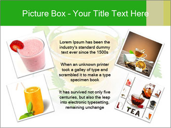0000074380 PowerPoint Templates - Slide 24