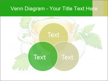 0000074380 PowerPoint Templates - Slide 33
