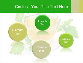 0000074380 PowerPoint Templates - Slide 77