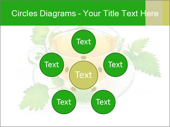 0000074380 PowerPoint Templates - Slide 78