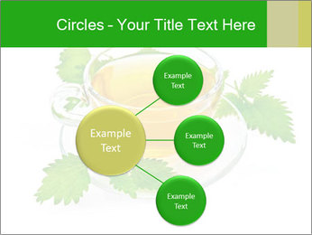 0000074380 PowerPoint Templates - Slide 79