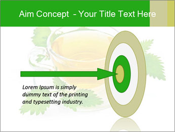 0000074380 PowerPoint Templates - Slide 83