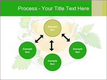 0000074380 PowerPoint Templates - Slide 91