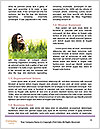 0000074386 Word Template - Page 4