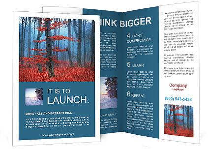 0000074397 Brochure Template