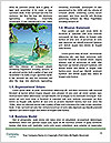 0000074398 Word Templates - Page 4