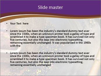 0000074401 PowerPoint Templates - Slide 2