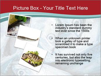 0000074402 PowerPoint Template - Slide 17