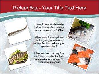 0000074402 PowerPoint Template - Slide 24