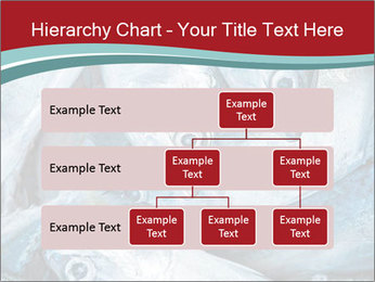 0000074402 PowerPoint Template - Slide 67