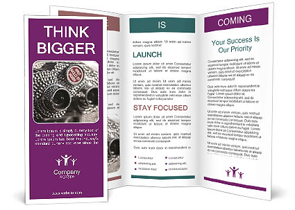 0000074409 Brochure Template