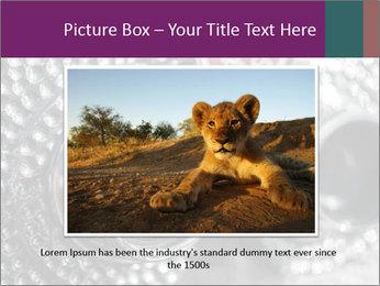 0000074409 PowerPoint Templates - Slide 16