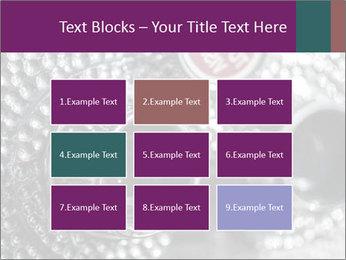 0000074409 PowerPoint Templates - Slide 68