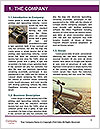 0000074409 Word Template - Page 3