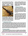 0000074409 Word Template - Page 4