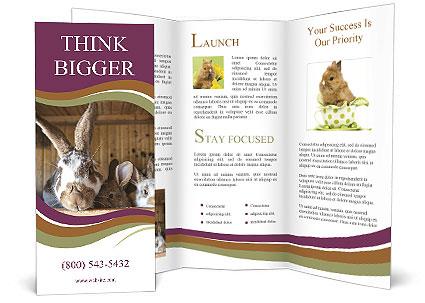 0000074412 Brochure Templates