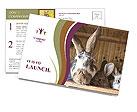 0000074412 Postcard Templates
