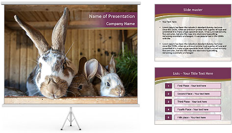 0000074412 PowerPoint Template