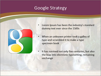 0000074412 PowerPoint Templates - Slide 10
