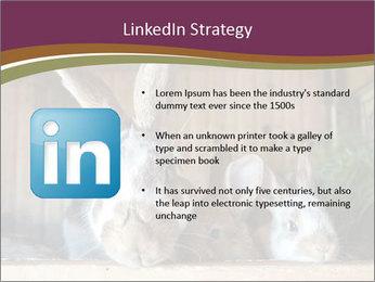 0000074412 PowerPoint Templates - Slide 12