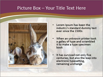 0000074412 PowerPoint Templates - Slide 13