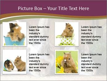 0000074412 PowerPoint Templates - Slide 14