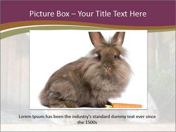 0000074412 PowerPoint Templates - Slide 15