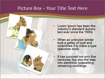0000074412 PowerPoint Templates - Slide 17