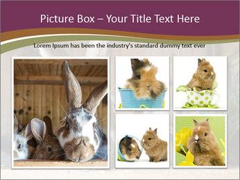 0000074412 PowerPoint Templates - Slide 19