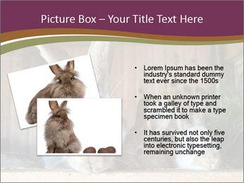 0000074412 PowerPoint Templates - Slide 20