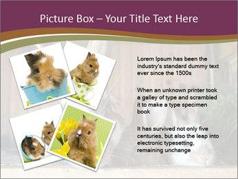 0000074412 PowerPoint Templates - Slide 23
