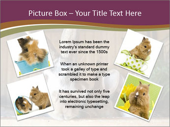 0000074412 PowerPoint Templates - Slide 24