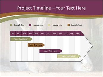 0000074412 PowerPoint Templates - Slide 25