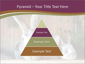 0000074412 PowerPoint Templates - Slide 30