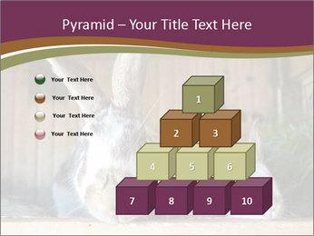 0000074412 PowerPoint Templates - Slide 31