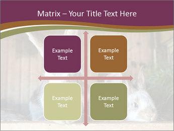0000074412 PowerPoint Templates - Slide 37