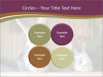 0000074412 PowerPoint Templates - Slide 38