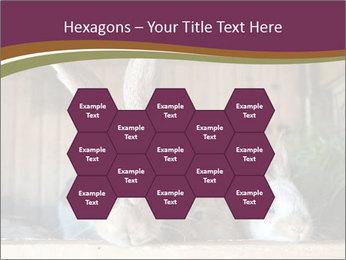 0000074412 PowerPoint Templates - Slide 44
