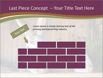 0000074412 PowerPoint Templates - Slide 46