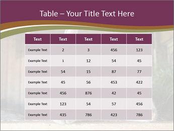 0000074412 PowerPoint Templates - Slide 55