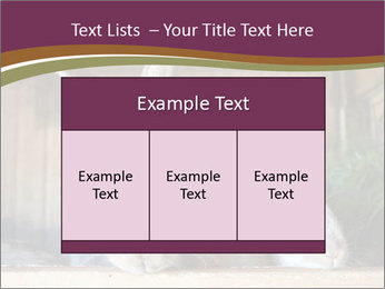 0000074412 PowerPoint Templates - Slide 59