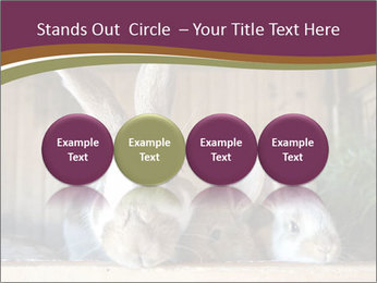 0000074412 PowerPoint Templates - Slide 76