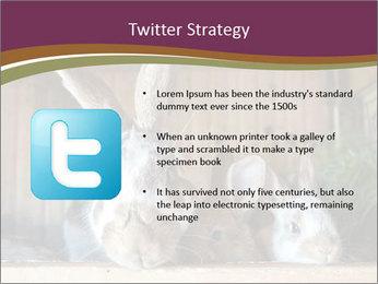 0000074412 PowerPoint Templates - Slide 9