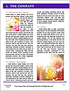 0000074418 Word Template - Page 3
