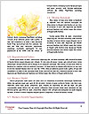 0000074418 Word Template - Page 4