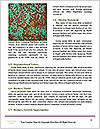 0000074419 Word Templates - Page 4