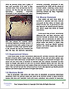 0000074421 Word Templates - Page 4