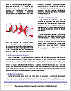 0000074423 Word Template - Page 4