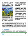 0000074428 Word Templates - Page 4